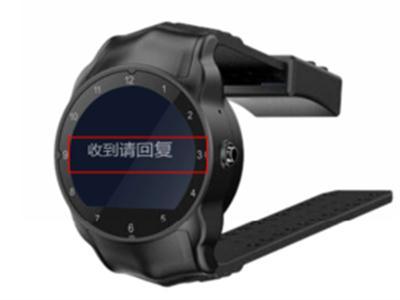 司法监管定位手表(4G 全网通)
